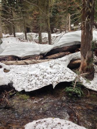 Twin Lakes Trail | May 14